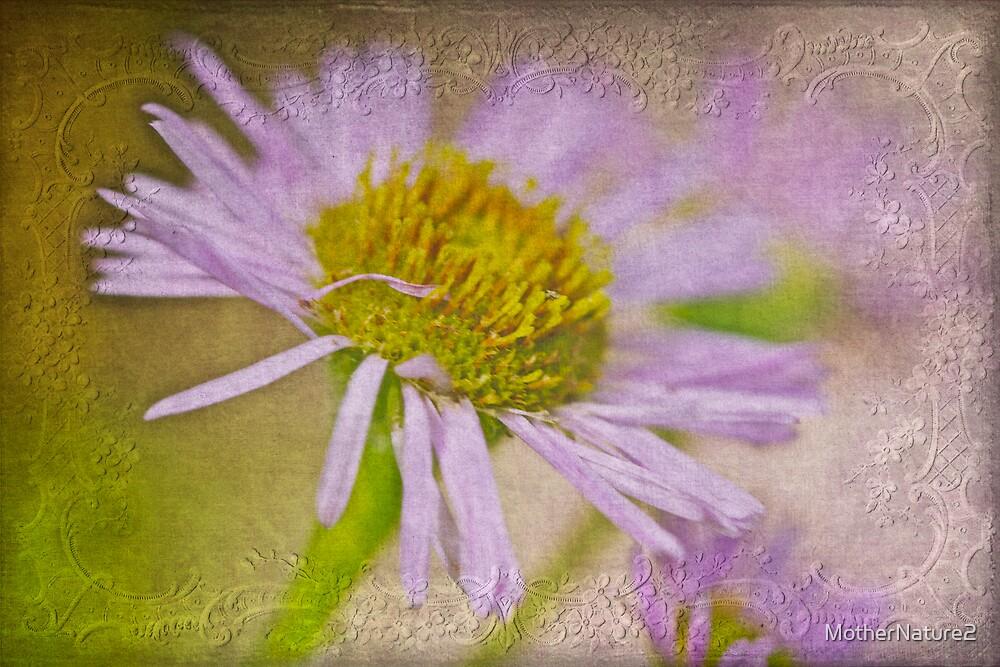 Daisy Fleabane Wildflower - One Of Nature's Wonders by MotherNature2