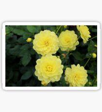 Flowering Sticker