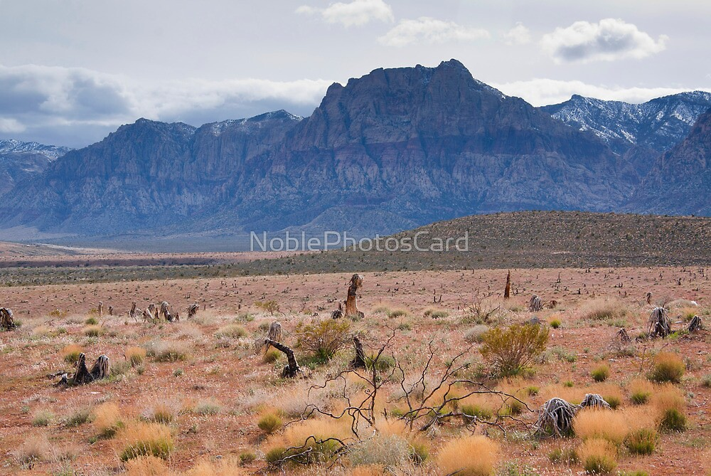 Blue Mountains in the Desert Southwest by NoblePhotosCard