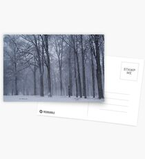 Dreamy Snowfall in Woods Postcards