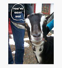Goat This Photographic Print