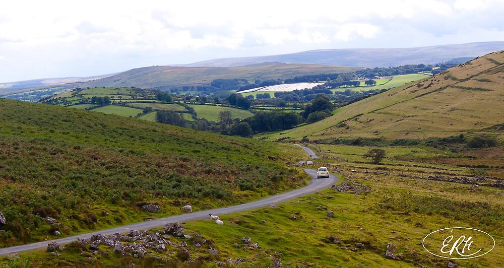 Overlooking Dartmoor by elisehendrick