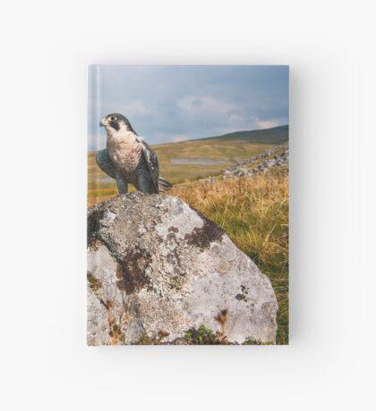 Peregrine Falcon Hardcover Journal