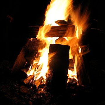 Campfire by half4adventure