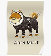 shiba inu-it Poster