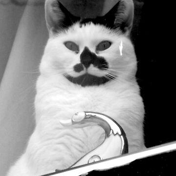 Cat Face by SebastianSmith