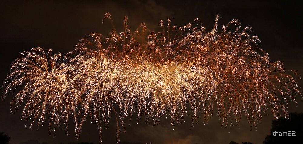 Fireworks by tham22