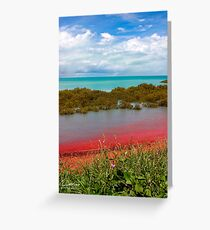 The colours of Broome Greeting Card
