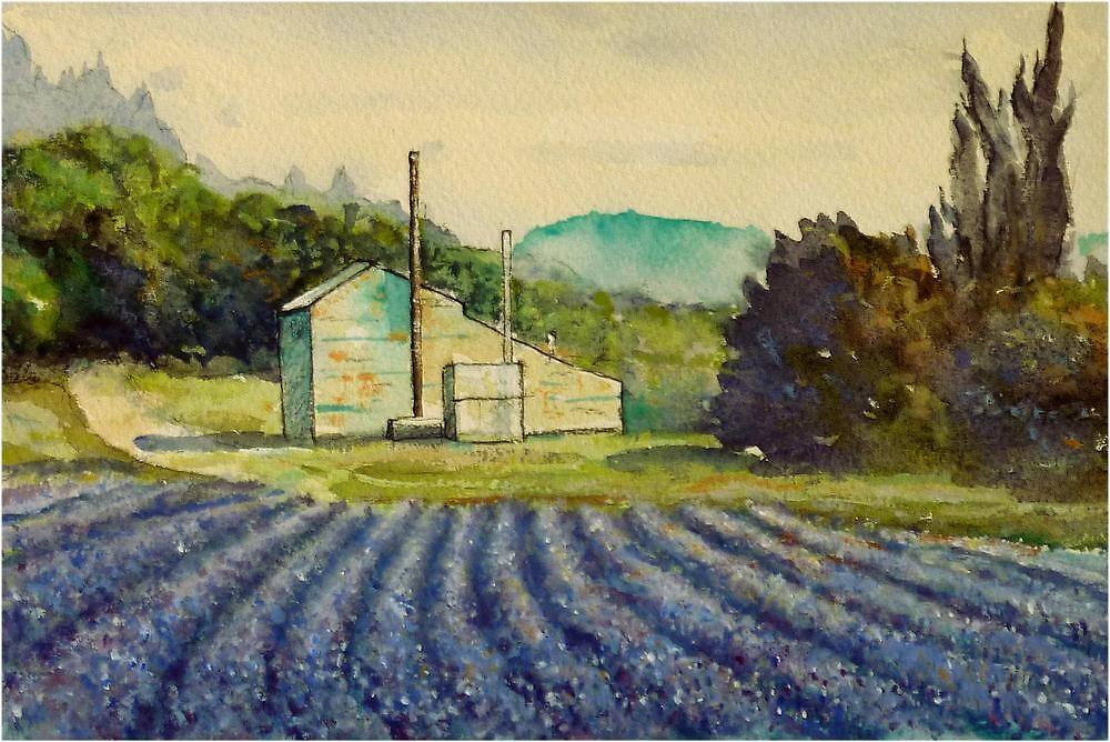 Lavender distillery near Sault and Aurel, Provence France by Fred Marsh