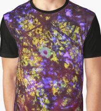Linford Summer - prism design 2 Graphic T-Shirt