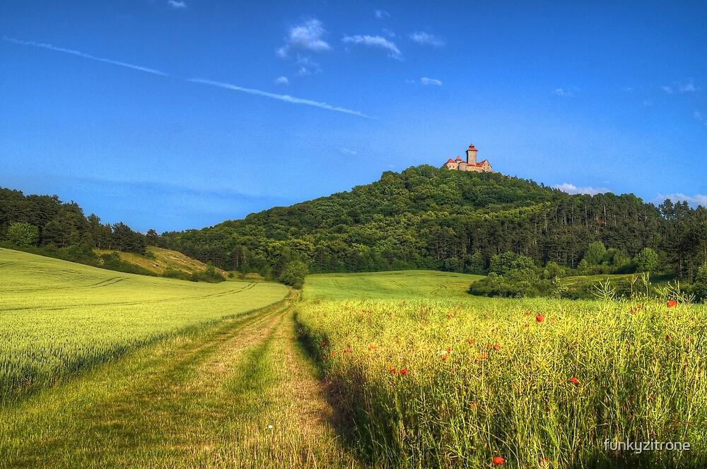 Medieval castle Wachsenburg - rural by funkyzitrone