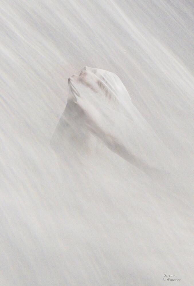 Scream by Yvonne Emerson