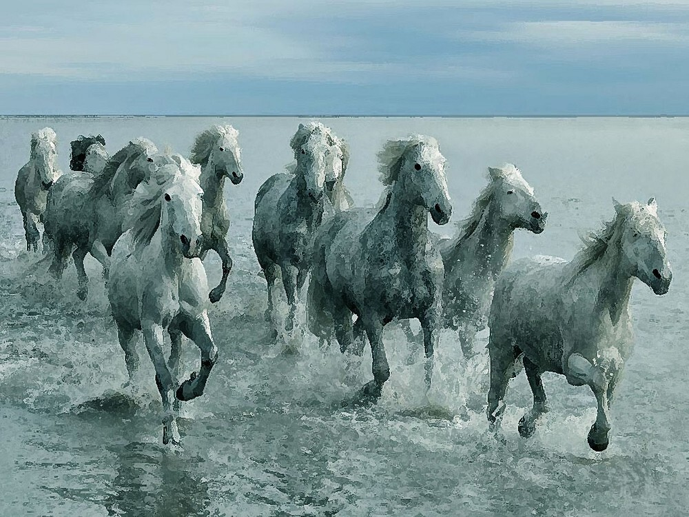 Horses In Ocean Watercolor   by Oldetimemercan