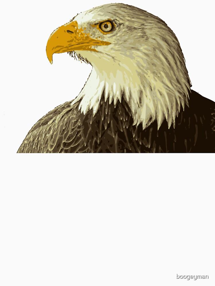 Bald Eagle edit by boogeyman