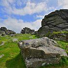 Dartmoor: Hound Tor by Robert Parsons