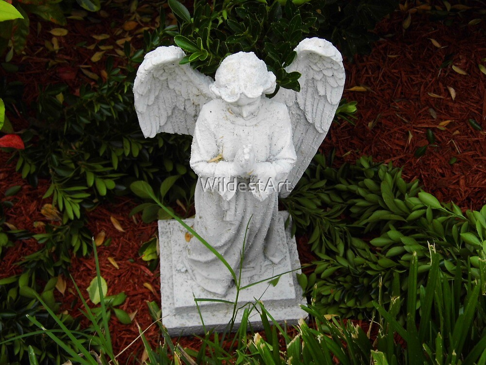 Garden Angel by WildestArt