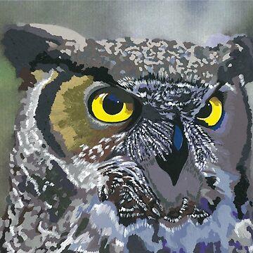 Owl Eyes by sarahwfox