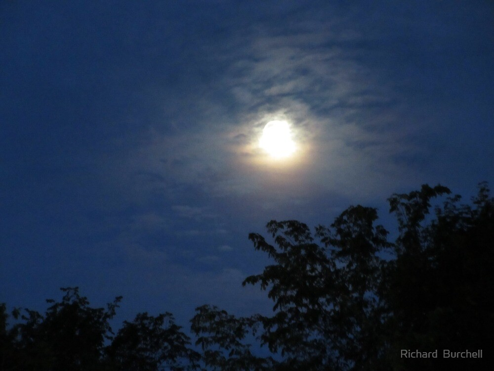 Moon Scape by Richard  Burchell