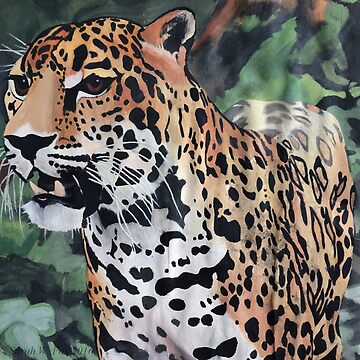 Jaguar in the Jungle by sarahwfox