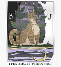 Warriors Tarot Series- The High Priestess Poster