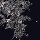 Primavera Redux on black  by mimobase