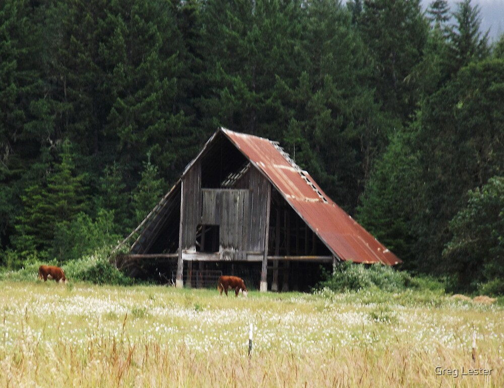 Old Barn by Greg Lester