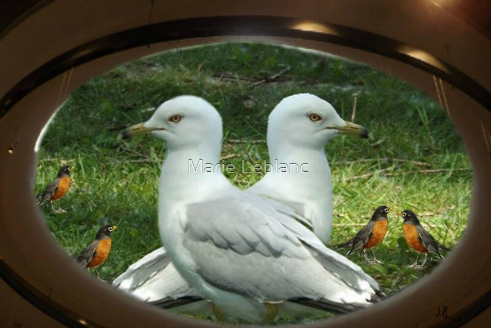 BIRDS by Marie Leblanc