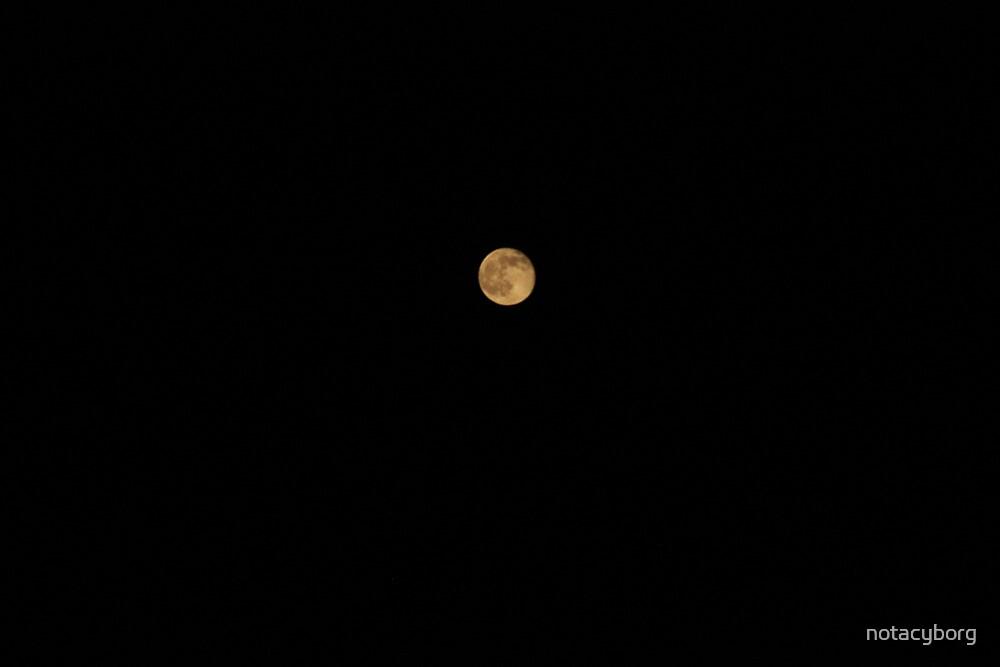 Full Moon  by notacyborg