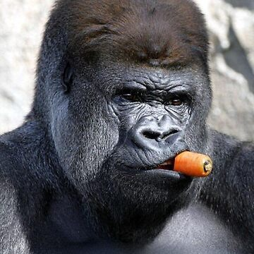 Gorilla Carrot  by ToastCrumbs