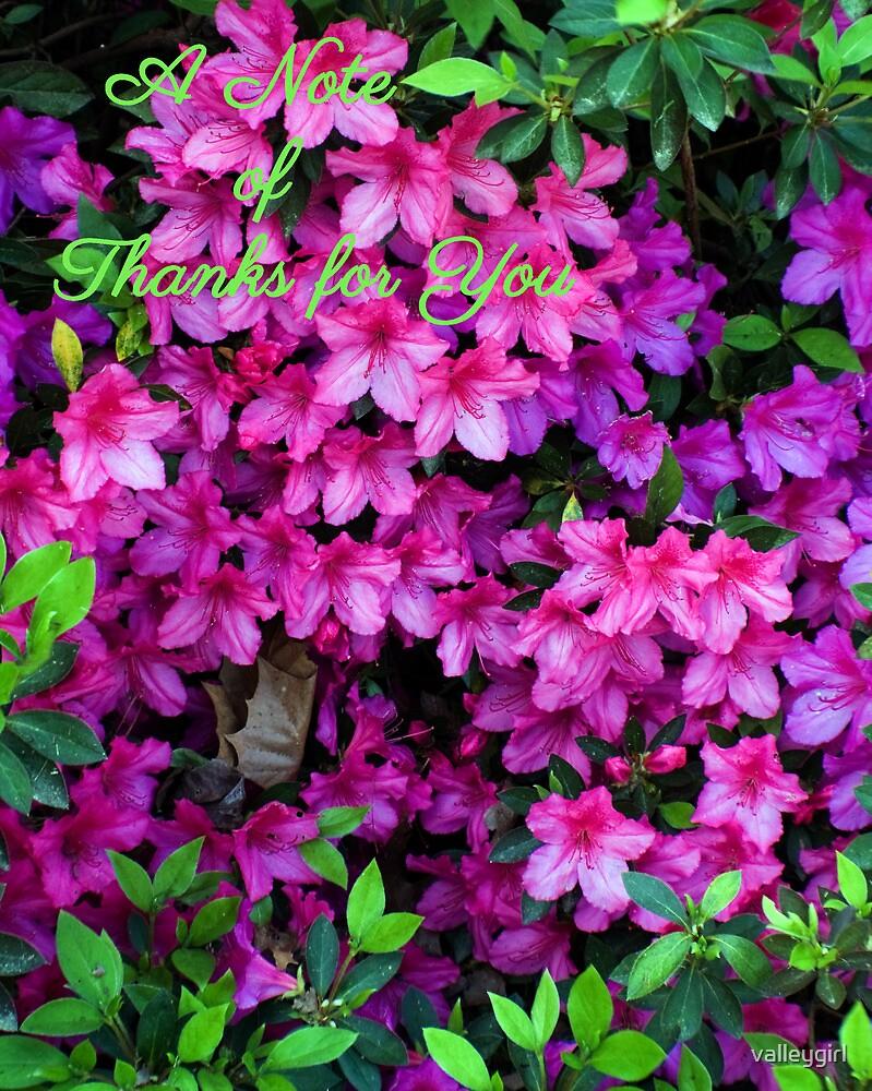 A Note Of Thanks Azalea ThankYouCard by valleygirl