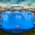 TVR Tuscan by Adrian Evans