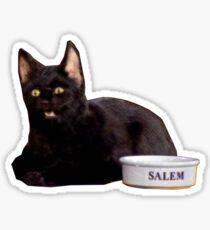 Salem | Orange Sticker