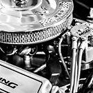 289 Ford Mustang V8 Engine by Splendiferous Images
