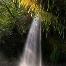 Twin Falls - Maui by Michael Treloar