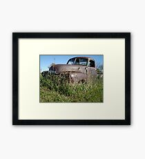 Rust and Grass Framed Print