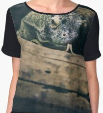 Komodo Dragon  Women's Chiffon Top
