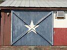 Lone Star by Cathy Jones