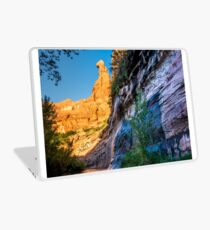 Coyote Gulch Sunrise - Utah Laptop Skin