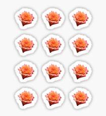 Orange Rose Sticker