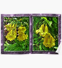 Crumpled Trumpets Poster