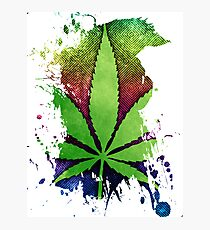 Pot Leaf Photographic Print
