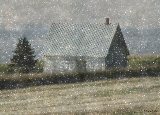 North Shore Snowstorm by RC deWinter