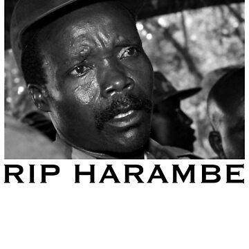 RIP HARAMBE  by DMUHFUQA