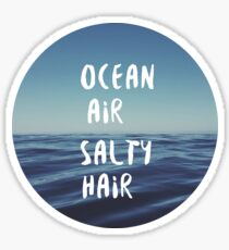 Ocean Air Salty Hair Sticker