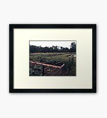 Community Gardens Framed Print