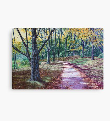 'AN AUTUMN WALK (AROUND BASS LAKE)'  Canvas Print