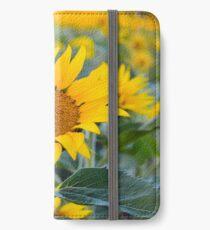 Fields Tallest Sunflower iPhone Wallet/Case/Skin