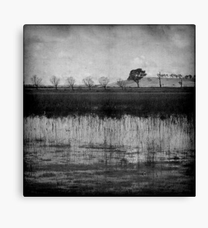 Middle of Winter Canvas Print