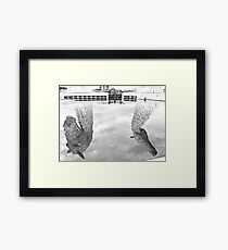 Reflections Of A Kelpie Framed Print
