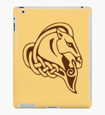 Whiterun Alternate Color iPad Case/Skin